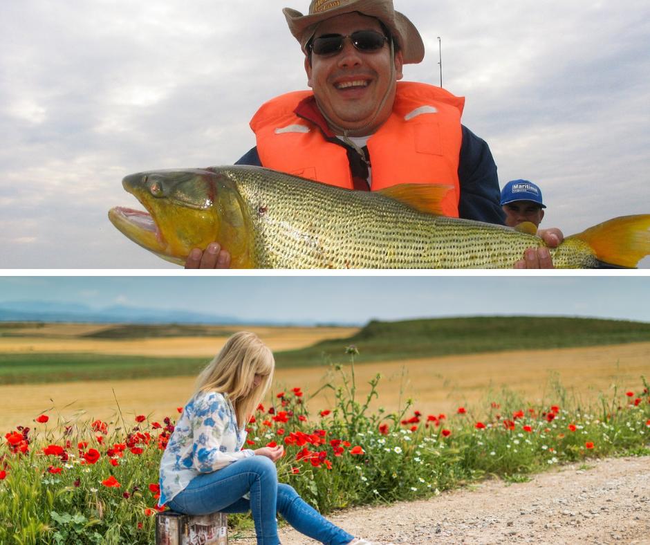 Ryby i walizki